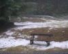 20062012_unwetter-bez-nk_foto-einsatzdoku-at_21