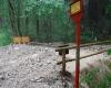 20062012_unwetter-bez-nk_foto-einsatzdoku-at_22