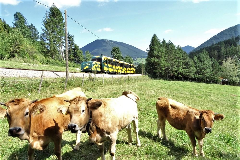 Schneebergbahn startet am Freitag in die neue Saison