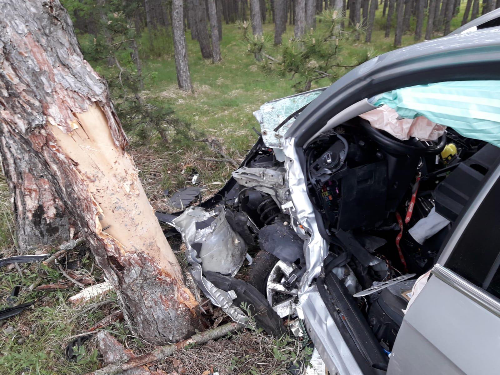 Florianis befreiten nach Unfall eingeklemmten Lenker