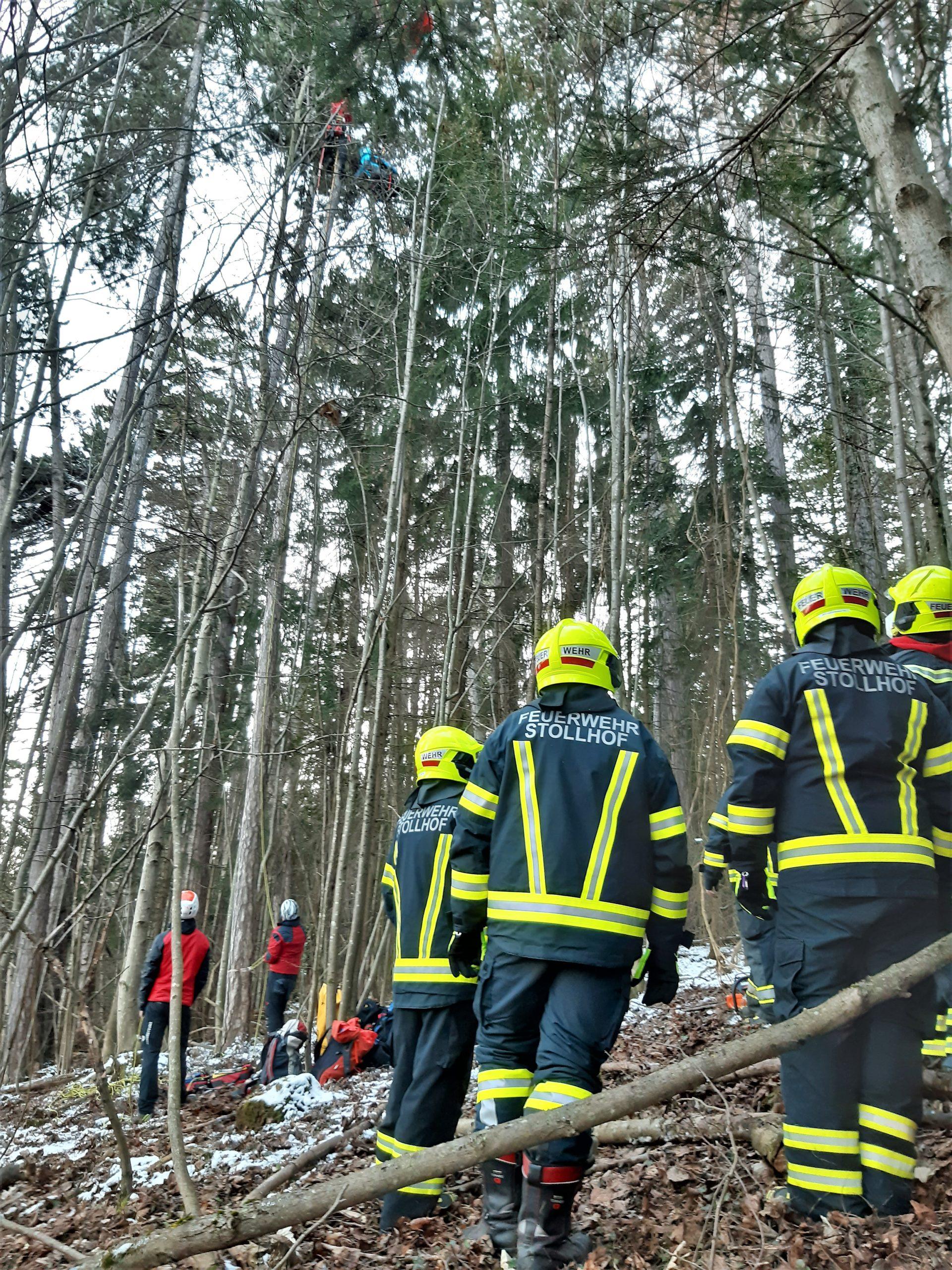 Hohe Wand: Bergretter holten Paragleiterin nach Absturz vom Baum